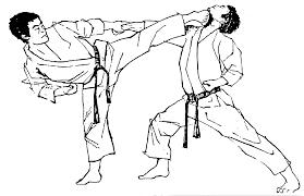 karate_jca